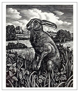 The Unofficial Unabridged Unthology of Hare Puns